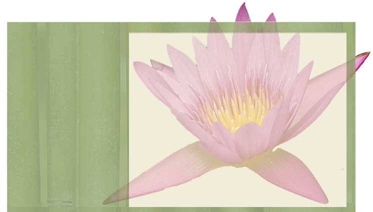 Reiki Courses Offered